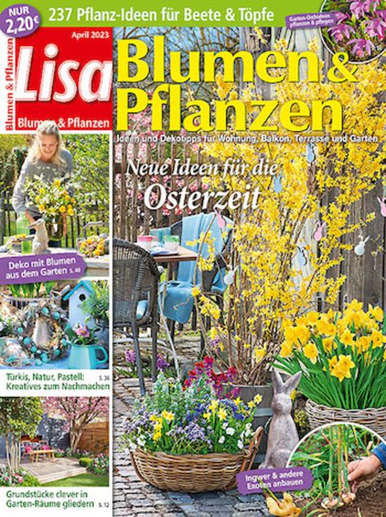 Gemeinsame Lisa Blumen & Pflanzen Abo - hier günstig und sicher abonnieren @ZA_41